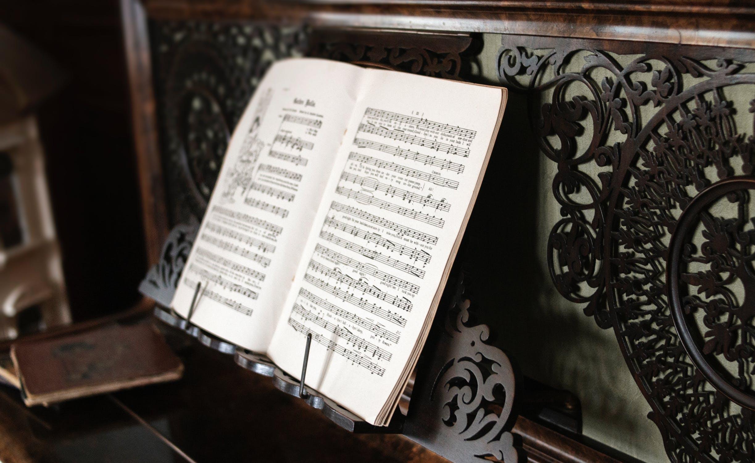 music concert love amicie de spoelberch